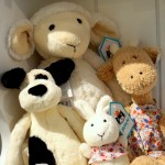 We stock a variety of creatures (most suitable from birth) by well-known quality brand, Jellycat